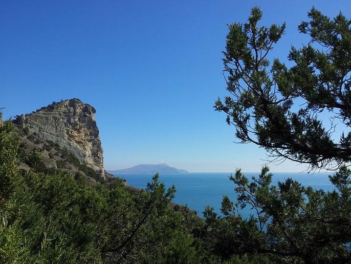 Крым. Природа Нового Света. Сосны и горы